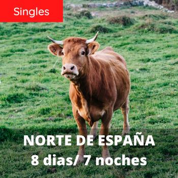 Singles Norte de España 8 dias / 7 noches