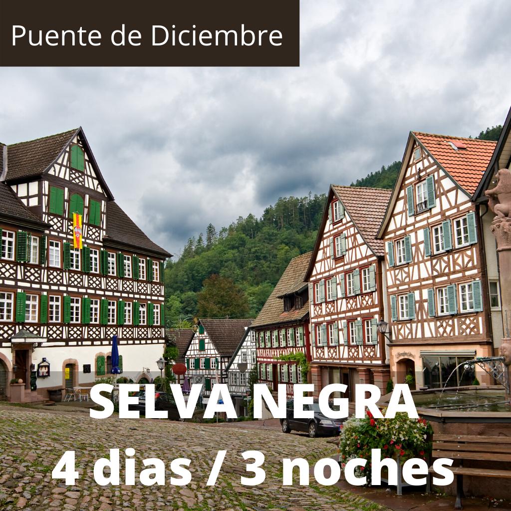Singles Puente de Diciembre Selva Negra 4 dias / 3 noches